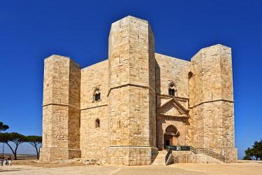 IT9719AW Castel del Monte, Bari Province, Puglia, Italy, Europe
