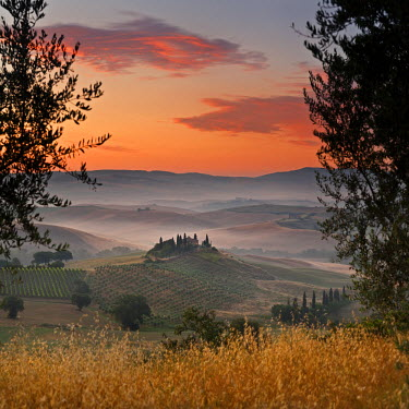 IT9799AW Italy, Tuscany, Siena district, Orcia Valley, Podere Belvedere near San Quirico d'Orcia