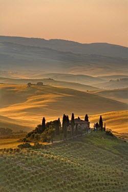 IT9808AW Italy, Tuscany, Siena district, Orcia Valley, Podere Belvedere near San Quirico d'Orcia
