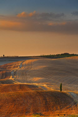 IT9823AW Italy, Tuscany, Siena district, Orcia Valley, countryside.