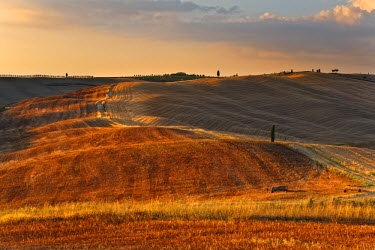 IT9824AW Italy, Tuscany, Siena district, Orcia Valley, countryside.