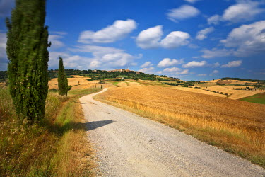 IT9826AW Italy, Tuscany, Siena district, Orcia Valley, Pienza.