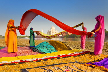 IN02194 Taj Mahal, UNESCO World Heritage Site, across Yamuna River, Women drying colourful Saris, Agra, Uttar Pradesh state, India (MR)