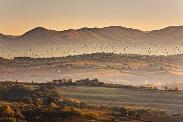 IT10002AW Italy, Umbria, Perugia district. Autumnal countryside near Montefalco
