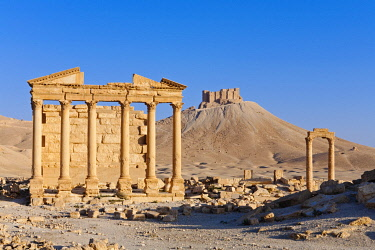 SY1322AW Syria, Homs Governate, Palmyra. Funerary Temple and Arab Citadel.