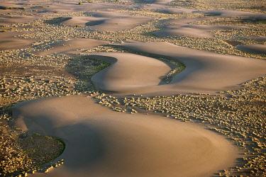 KEN7750 Barchan dunes in the hospitable, low-lying Suguta Valley of northern Kenya.
