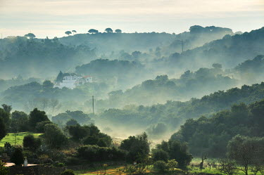 POR6734AW Arrabida Natural Park in the mist. Palmela, Portugal