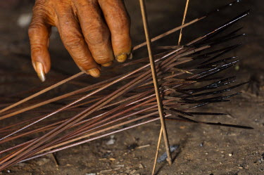 SA07_POX1845_M Huaorani Indian, Kempere Tega making Curare tipped darts. Bameno Community. Yasuni National Park. Amazon rainforest, Ecuador.