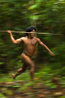 SA07_POX1998_M Namo Yate hunting with a lance which is made from the stem of a palm tree. Large terrestrial game like peccaries and tapir are hunted in this way. Bameno Community. Yasuni National Park. Amazon rainfo...