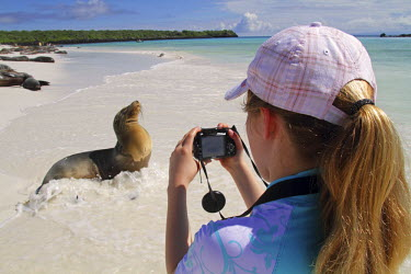 ECU1195 Girl photographing sea lion, Gardner Bay, Espanola, Galapagos Islands, Ecuador
