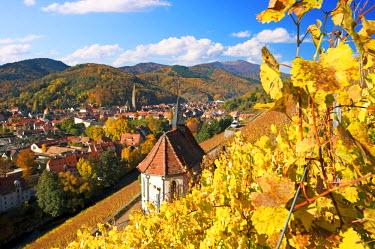 FRA7288AW Thann, Haut-Rhin, Alsace, France