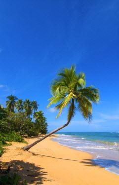 PUR0025AW Tres Palmitas Beach, Loiza, Puerto Rico