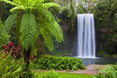 AUS1751 Australia, Queensland, Millaa Millaa.  Millaa Millaa Falls on the Atherton Tablelands near Cairns.