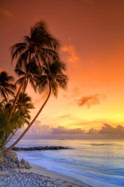 BB01110 Caribbean, Barbados, Mullins Beach