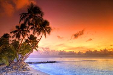 BB01111 Caribbean, Barbados, Mullins Beach