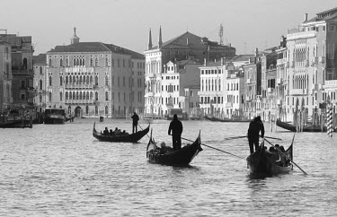ITA1396AW Gondoliers on the Gran Canal, Venice, Veneto region, Italy