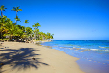 DM01154 Dominican Republic, Samana Peninsula, Las Terrenas, Playa Bonita