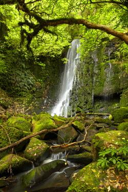 AU02DWA6835 Matai Falls, Catlins, South Otago, South Island, New Zealand