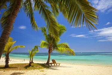 OC01DWA0271 Beach, palm trees and lounger, Plantation Island Resort, Malolo Lailai Island, Mamanuca Islands, Fiji, South Pacific