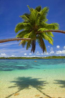 OC01DWA0357 Palm trees, Shangri-La Fijian Resort, Yanuca Island, Coral Coast, Viti Levu, Fiji, South Pacific