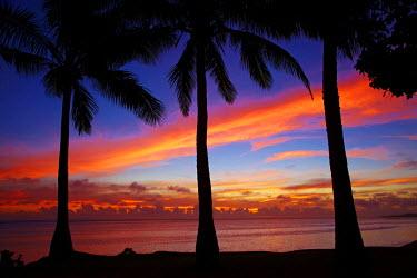 OC01DWA0402 Sunset and palm trees, Coral Coast, Viti Levu, Fiji, South Pacific