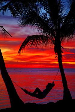 OC01DWA0424 Woman in hammock, and palm trees at sunset, Coral Coast, Viti Levu, Fiji, South Pacific (MR)