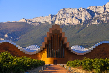 SPA4649 Bodegas Ysios wine cellar, built by Santiago Calatrava, Laguardia, Alava, Spain, Europe