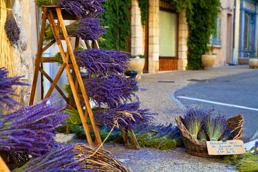 FRA7657 Sault, Vaucluse, Provence, France