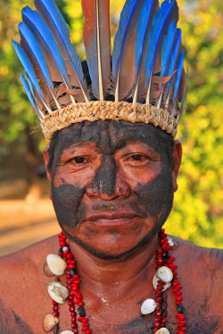 BRA0937AW South America, Brazil, Miranda, Terena indigenous man from the Pantanal in a Macaw feather headdress