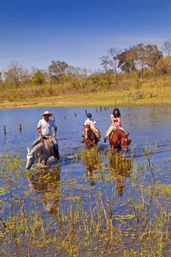 BRA0950AW South America, Brazil, Mato Grosso do Sul, Fazenda 23 de Marco, pantaneiro rancher guiding tourists through the Pantanal