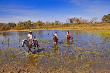 BRA0951AW South America, Brazil, Mato Grosso do Sul, Fazenda 23 de Marco, pantaneiro rancher guiding tourists through the Pantanal