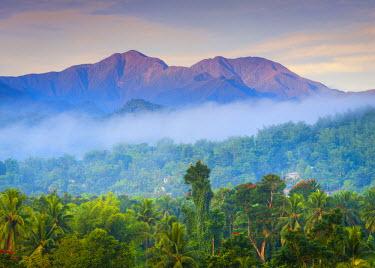 JM02097 Blue Mountains, Portland Parish, Jamaica, Caribbean