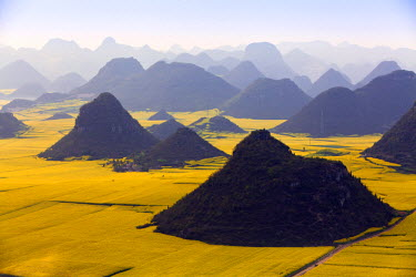 CH9794 China, Yunnan, Luoping. Mustard fields in bloom amongst the karst outcrops at Luoping.