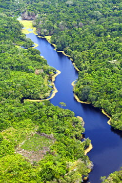 BRA1187AW Brazil, Amazon, Aerial view of an igapo (black water creek) in the Amazon forest near Manaus