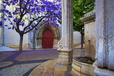 PT01257 Main Entrance of the Carmo Church, Lisbon, Portugal