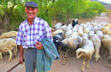 TK09246 Goatherder with Goatherd, Turkey