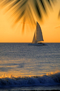 HMS359421 French West Indies, Martinique, the South, a sailboat at sunset