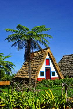 POR6951AW Traditional Santana thatch house. Madeira, Portugal