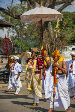 SRI1640 A high official of the Temple of the Sacred Tooth Relic dressed in traditional regalia and attended by lance, sunshade and umbrella bearers participates in the Kandy Day Perahera, Sri Lanka