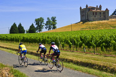 HMS303400 France, Gironde, Monbadon, Bordeaux vineyard, bicycle touring on Saint Emilion roads and Chateau de Monbadon, AOC Cotes de Castillon
