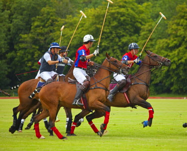 ENG10614 UK, Gloucestershire. A polo match in full swing at the Beaufort Polo Club.