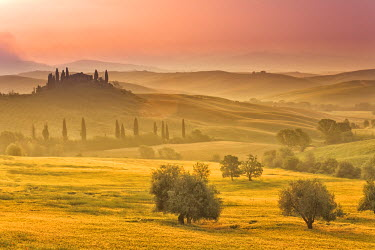 ITA1696AW Italy, Tuscany, Siena district, Orcia Valley, Podere Belvedere near San Quirico d'Orcia