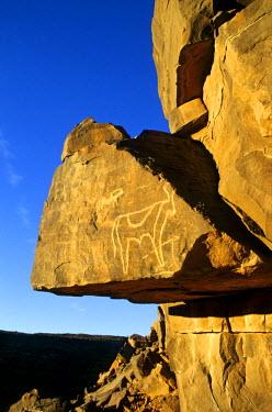 HMS0304734 Mauritania, rock paintings of El Khalaouya
