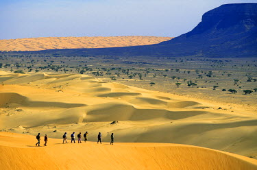 HMS0304747 Mauritania, Adrar Region, hiking in the dunes of the Maqteir Desert