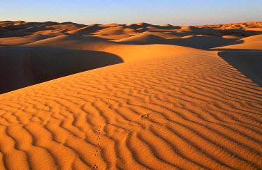HMS0078861 Mauritania, Adrar region, desert sand dunes
