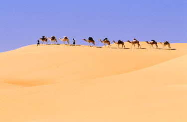 HMS0018844 Maurinania, Adrar region, walking tour and caravan of dromedaries in the Moresque desert