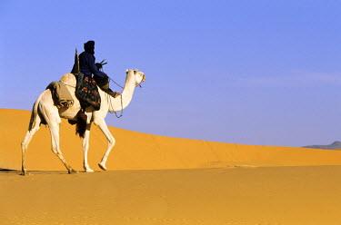 HMS0106172 Niger, Sahara, Tenere desert, tuareg camel rider