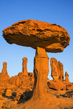 CHA0164 Chad, Chigeou, Ennedi, Sahara. A giant mushroom-shaped rock feature of balancing sandstone.