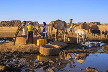 CHA0186 Chad, Kachabi, Ennedi, Sahara.  Drawing water from a deep well.