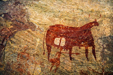 CHA0189 Chad, Terkei West, Ennedi, Sahara.  An ancient rock painting of a human figure with a large spear beneath a Bichrome cow.